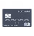 Platinum Debit Card vector image