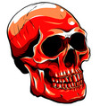 realistic red skull vector image vector image
