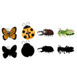 set various insect vector image