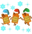 Three SIM cards go in santa outfit vector image