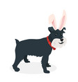 a dog with bunny ears vector image