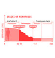 stages of menopause infographic vector image