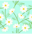 white cosmos flower on green mint background vector image