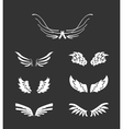 White wings collection vector image