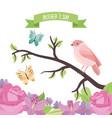 cute bird butterflies in branch flowers decoration vector image