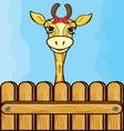 Giraffe card template vector image vector image