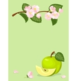 green apple and flowers card vector image vector image