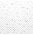 realistic water rain drops on alpha vector image vector image