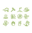 set icons growing seedlings plant agriculture vector image
