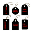 Set of black tags vector image vector image