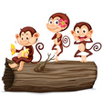 Three monkeys on the log vector image vector image