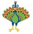 Bird peacock on white vector image