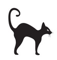 black cat icon flat style isolated on white vector image