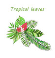 floral paradise hand drawn tropical leaves vector image vector image