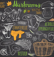 Mushrooms sketch doodles hand drawn set Different vector image