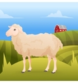 realistic cute sheep standing on gras with farm vector image vector image