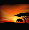 Sunset background with animal elephant vector image vector image
