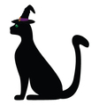 black cat in the hat for Halloween vector image
