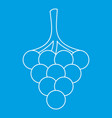 branch of grape icon outline style vector image vector image