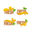 Collection of bright and shine logo stickers