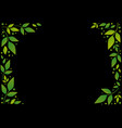 frame of green leaves and dots on black vector image