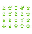 grass color silhouette icons set vector image vector image