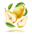 realistic fresh pear with leaf green fruit vector image vector image