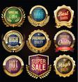 retro vintage golden badges labels and shields vector image vector image