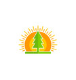 tree sun logo icon design vector image