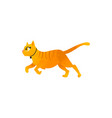 cartoon cat animal rinning isolated vector image