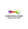 cheetah run colorful concept template vector image
