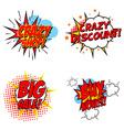 Crazy Discount Set of the design elements vector image