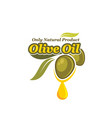 green olives with oil drop label for food design vector image