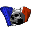 human skull with french flag vector image vector image