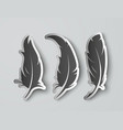 set isolated paper feathers with shadows vector image vector image