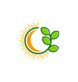 green sun logo icon design vector image