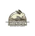 running rabbit logo template with modern emblem vector image vector image