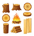 set of logging stumps and boards woodpile and vector image