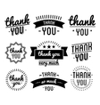 Thank you vintage label set vector image