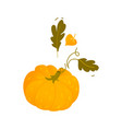 cartoon pumpkin halloween thanksgiving symbol vector image