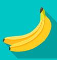 banana flat design vector image vector image