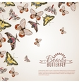 Butterfly Realistic Background vector image vector image