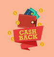 cash back icon with wallet and coin vector image vector image