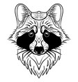 sketch raccoon face hand drawn doodle vector image vector image