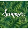 Summer poster Hand lettering text on palm leaves vector image