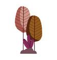 trees foliage nature bush plants isolated icon vector image