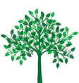 a green tree vector image vector image
