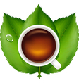 Cup With Tea And Green Leaves vector image