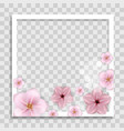empty photo frame template with spring flowers vector image vector image