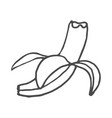 fruits banana doodle isolated vector image vector image
